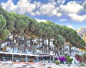 Pine Beach Hotel Turunc
