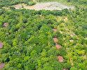 Palm Garden Village