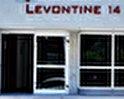 Levontine 14