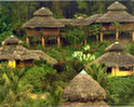 Arasha Ecuador's Tropical Forest Resort & Spa