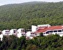 Villa Emona