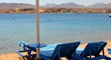 Aqua Blue Resort Ssh