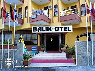 Фото отеля Balik Hotel