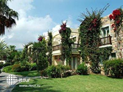 Фото отеля Divan Palmira