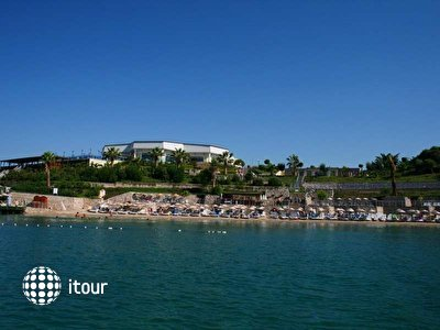 Фото отеля Palm Wings Beach Resort