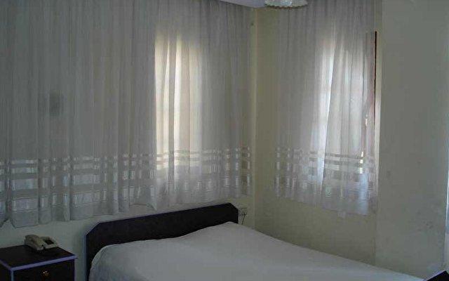 Alpen Hotel 3