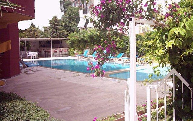 Alpen Hotel 4