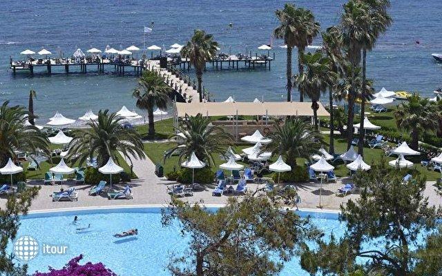 Turquoise Hotel 8