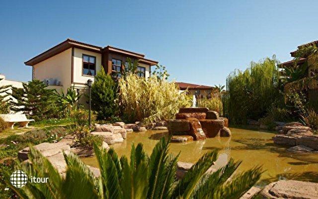 Tui Blue Palm Garden (ex. Iberotel Palm Garden) 8