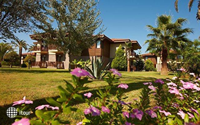 Tui Blue Palm Garden (ex. Iberotel Palm Garden) 7