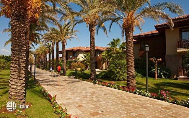 Tui Blue Palm Garden (ex. Iberotel Palm Garden) 5