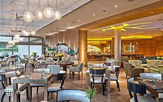Intercontinental Ceylan Hotel Istanbul 6