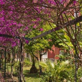 Ganita Garden Club  9