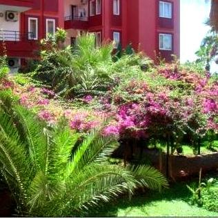 Ganita Garden Club  2