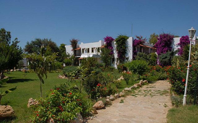 Kosdere Garden 2