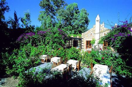 Okaliptus Hotel 1