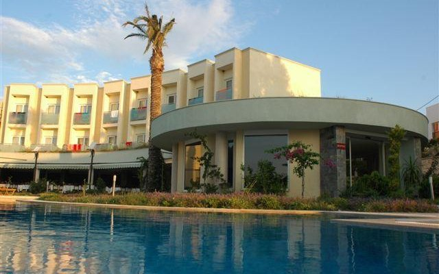 Royal Palm Area 3