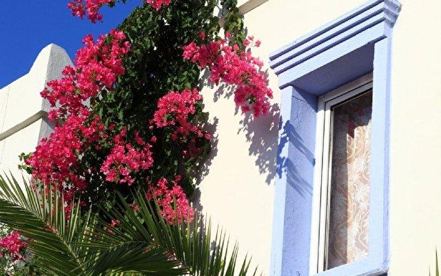 Club Paloma Apartments 6