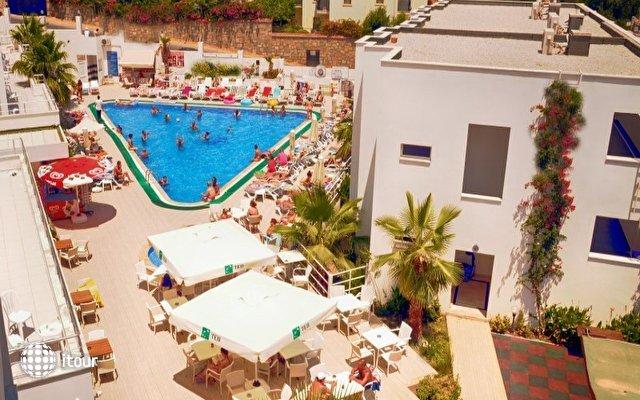 Shark Club Hotel 9