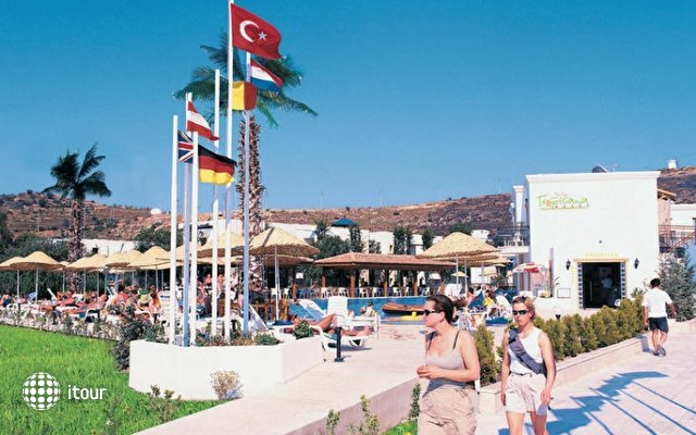 Tropicana Beach 7
