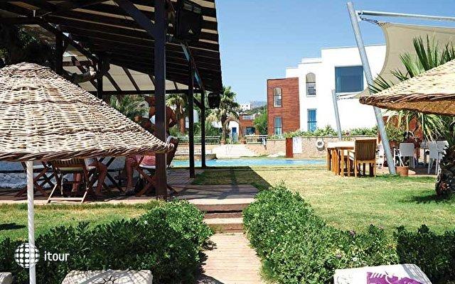 The Luvi Hotel 4