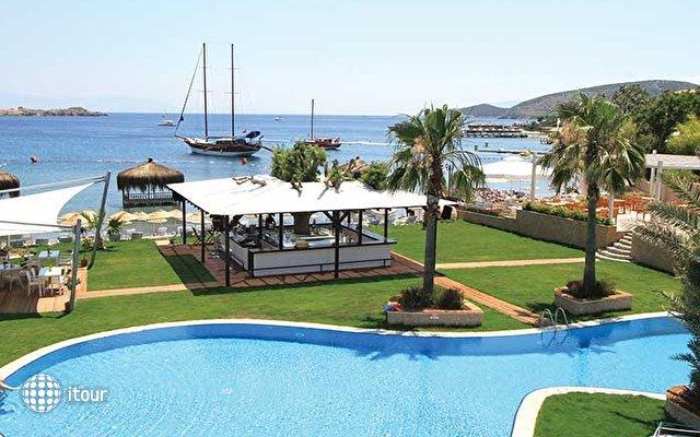 The Luvi Hotel 1