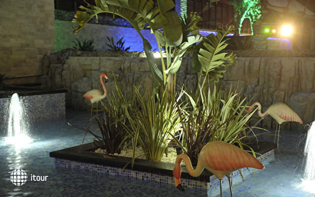Adenya Hotel & Resort 5