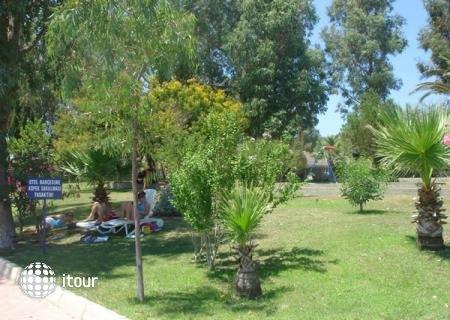 Halic Park 6