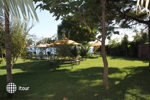 Hotel Rena 10