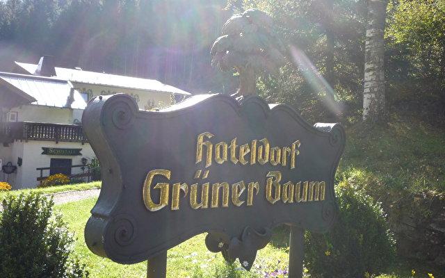 Hoteldorf Gruener Baum 1