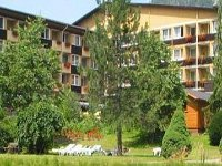 Kurhotel Palace Gastein 10