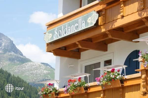 Soldanella 3