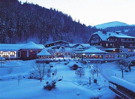 Hoteldorf Gruener  Baum 4