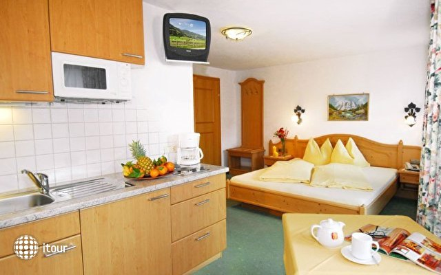 Apart Hotel Garni Austria 3