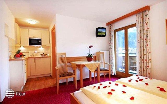Apart Hotel Garni Austria 4