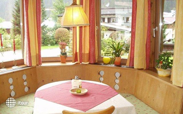 Apart Hotel Garni Austria 5
