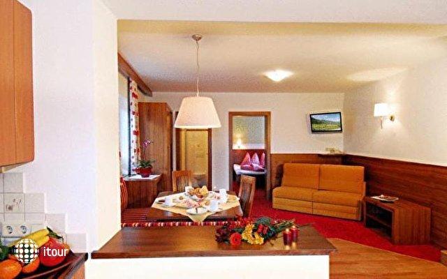 Apart Hotel Garni Austria 7