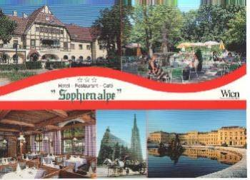 Sophienalpe Hotel 9