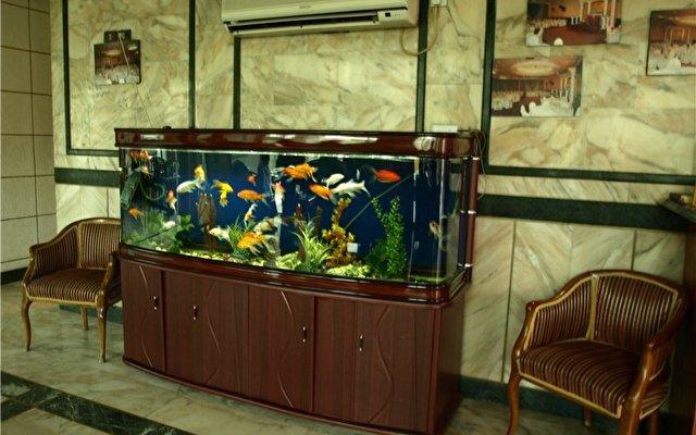 Petunia Hotel 2