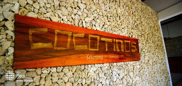 Cocotinos Sekotong 4