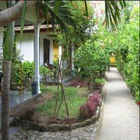 Dream Divers Bungalows 4