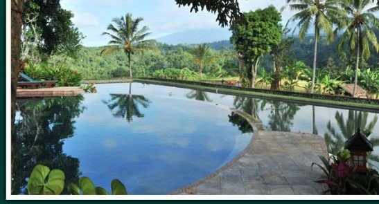 Ijen Resort & Villas 4