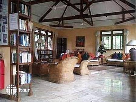 Udayana Kingfisher Eco Lodge 4