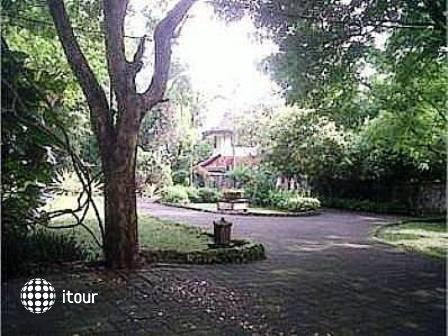 Udayana Kingfisher Eco Lodge 7
