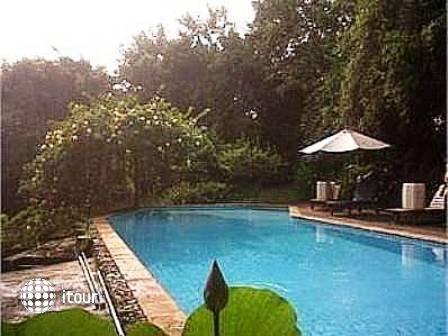Udayana Kingfisher Eco Lodge 2