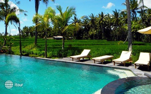 Bhanuswari Resort & Spa 7