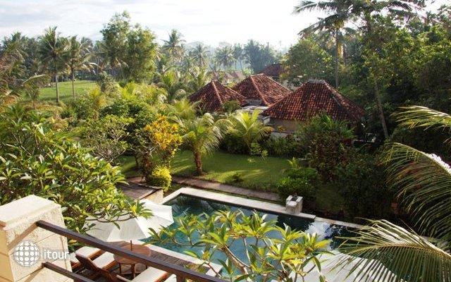 Bhanuswari Resort & Spa 10