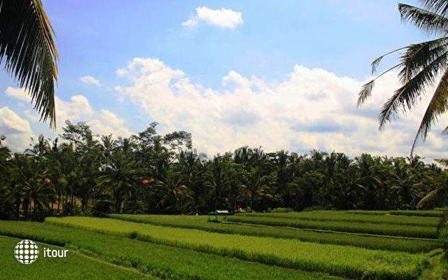 Junjungan Bali Hotel & Spa 8