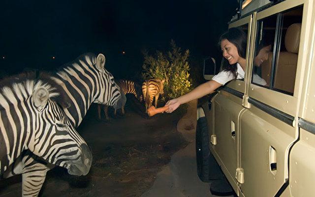Mara River Safari Lodge 5