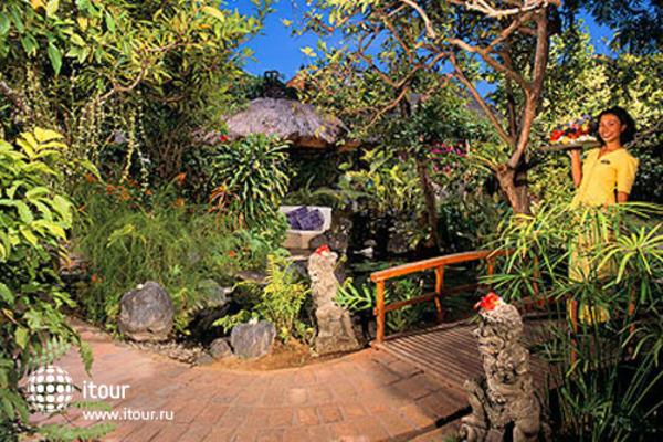 Poppies Bali 6